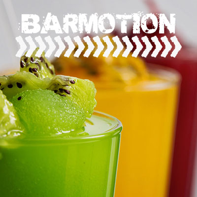 Suppliers Barmotion